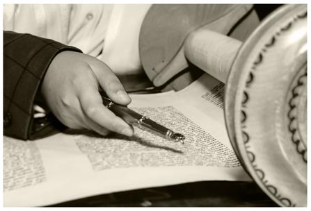 Mindy & Henry Orlinsky Torah Studies Fund
